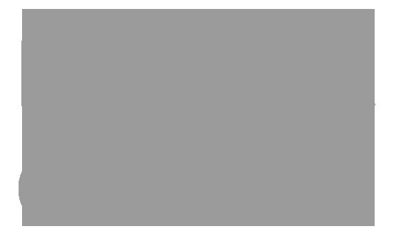 L'AMIE direkt Versicherung